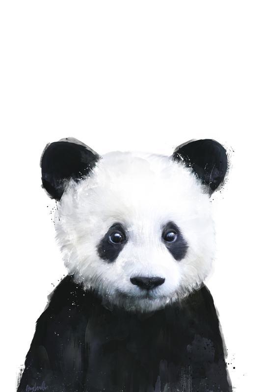 Little Panda -Alubild