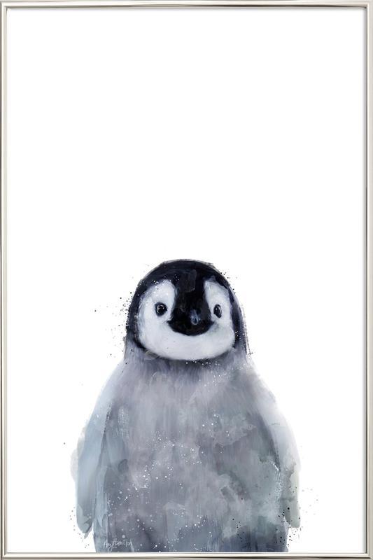 Little Penguin -Poster im Alurahmen
