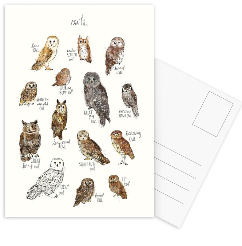 Owls Postcard Set