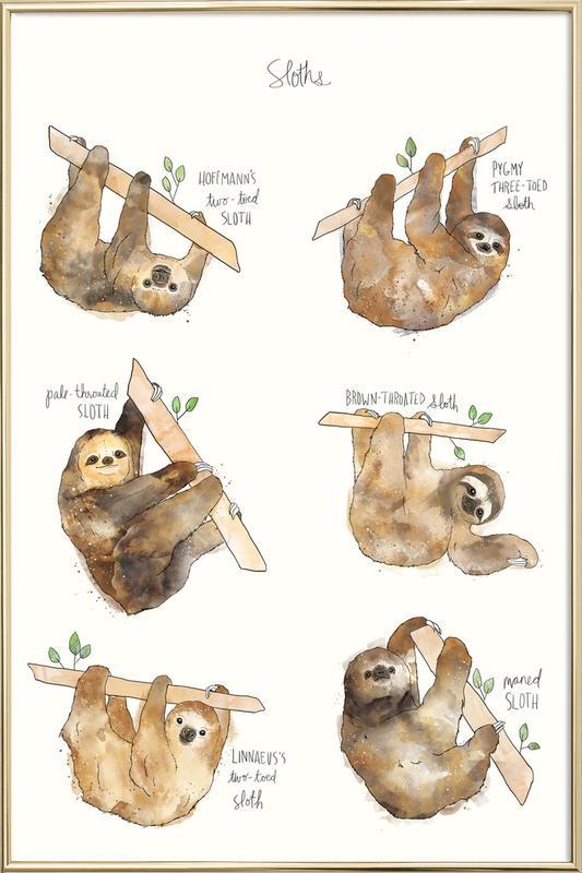 Sloths poster in aluminium lijst