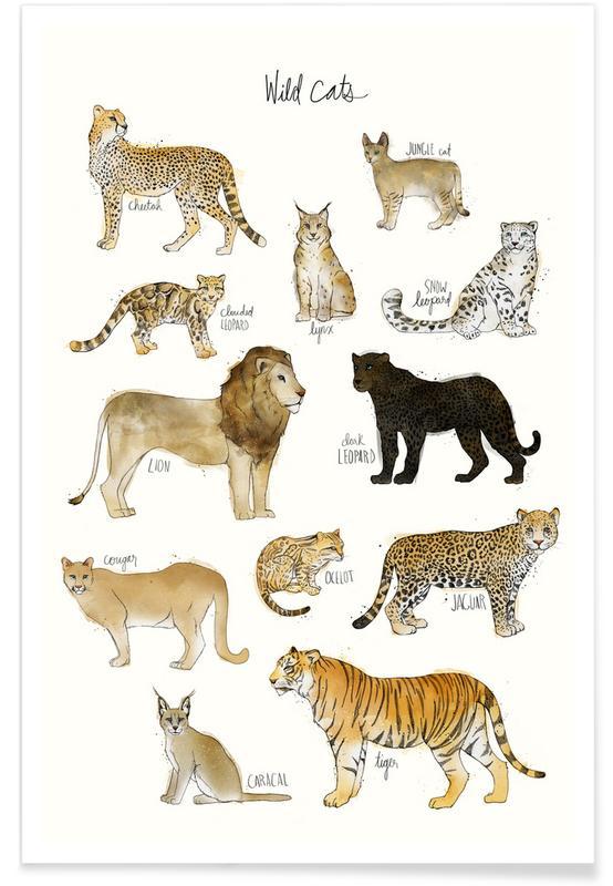 Wild Cats Illustration Plakat