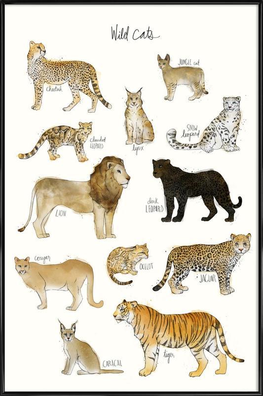 Wild Cats ingelijste poster