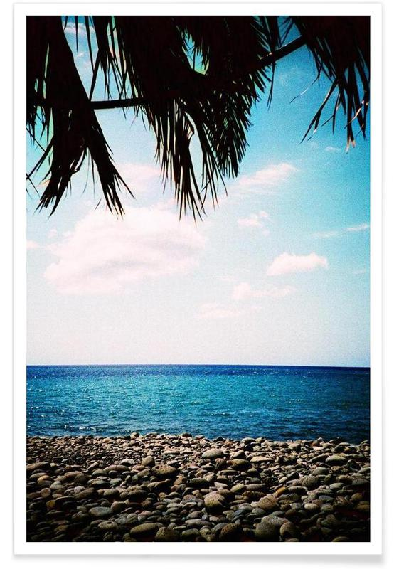 Plages, Canopy affiche