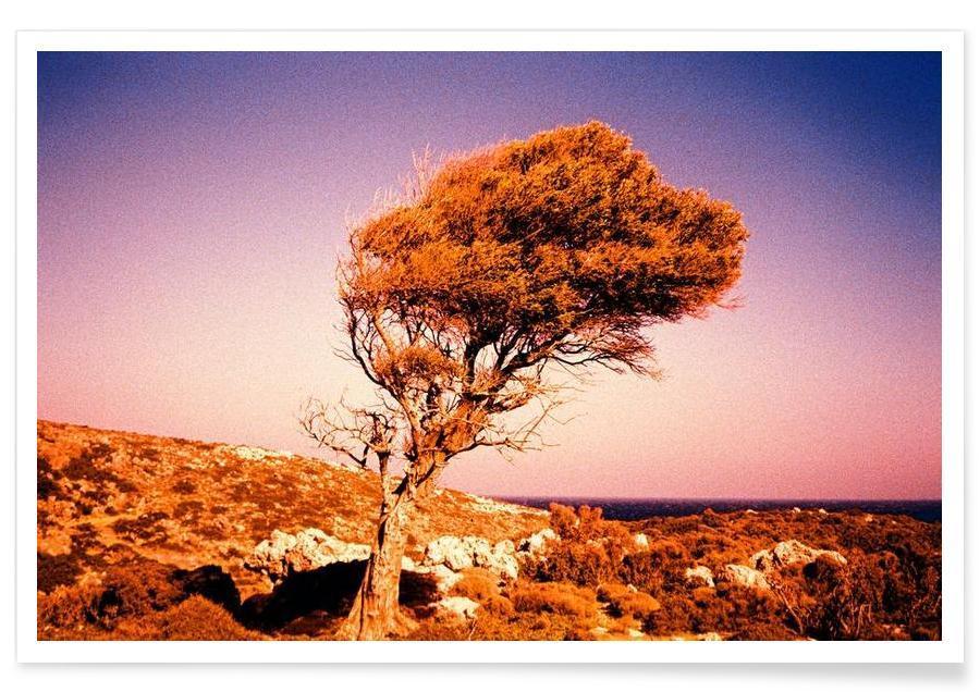 Arbres, Crete Heat affiche