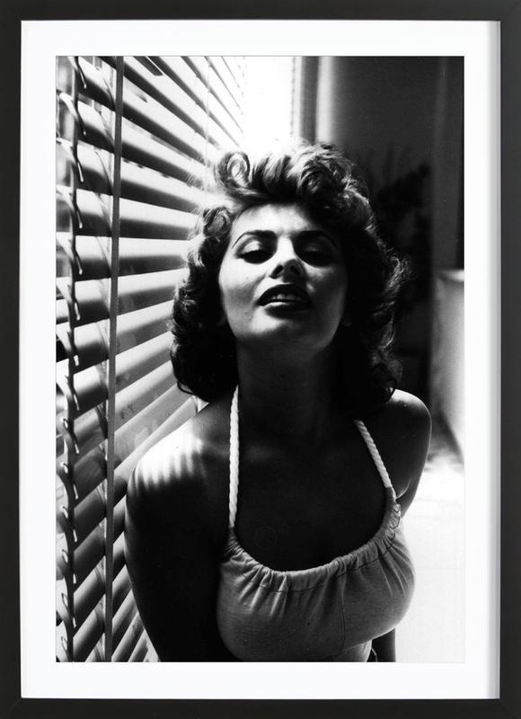 Sophia Loren Portrait ingelijste print