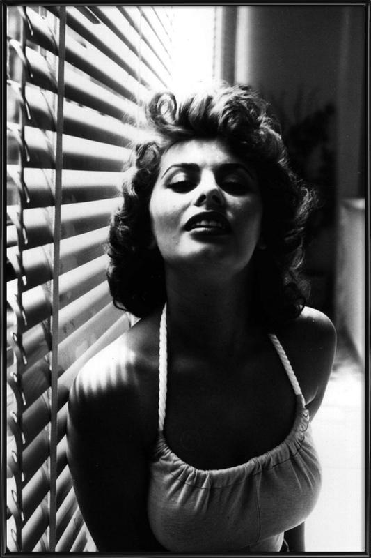 Sophia Loren Portrait ingelijste poster