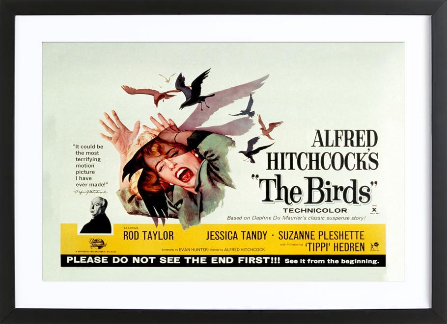 Alfred Hitchcock 'The Birds' Retro Movie Poster -Bild mit Holzrahmen