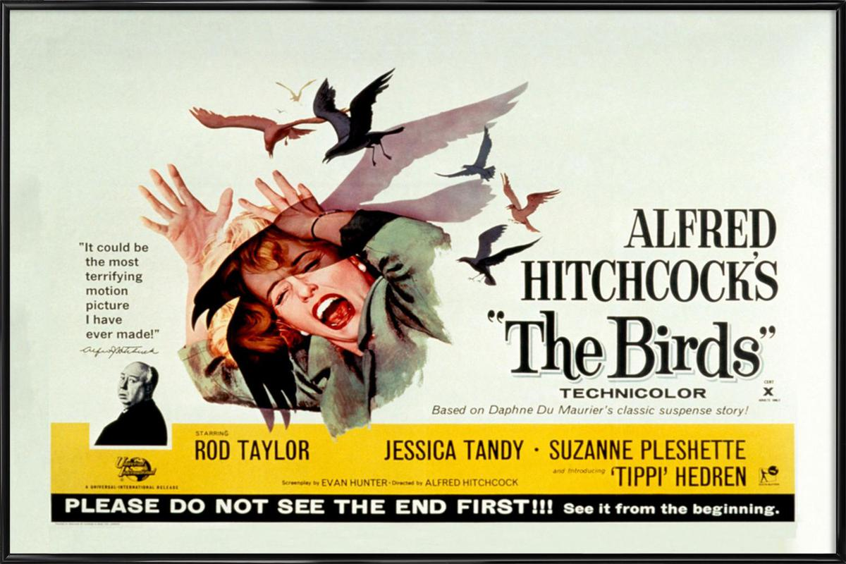 Alfred Hitchcock 'The Birds' Retro Movie Poster Framed Poster