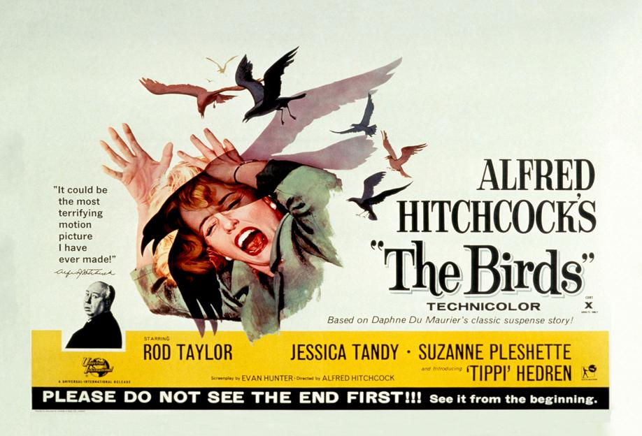 Alfred Hitchcock 'The Birds' Retro Movie Poster Aluminium Print