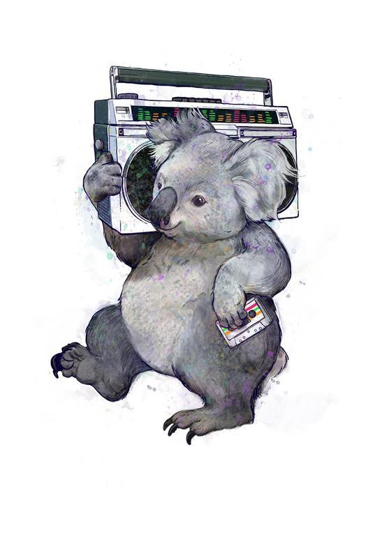 Koala -Alubild