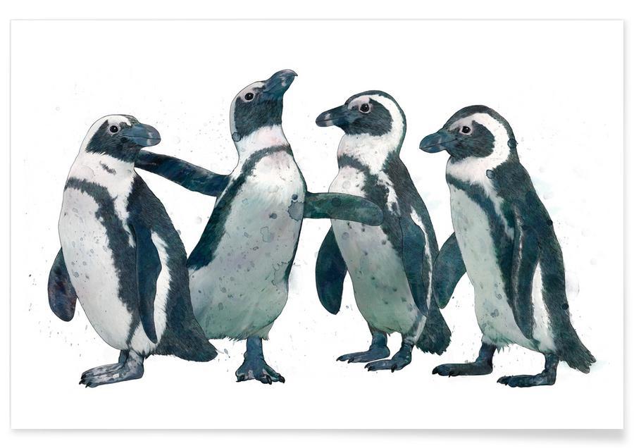 Noir & blanc, Pingouins, Penguins affiche