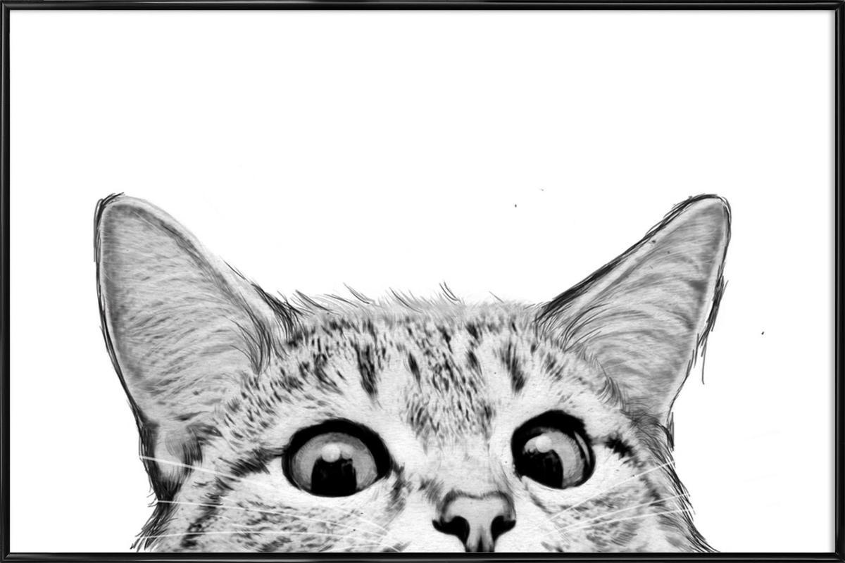 Cat Framed Poster