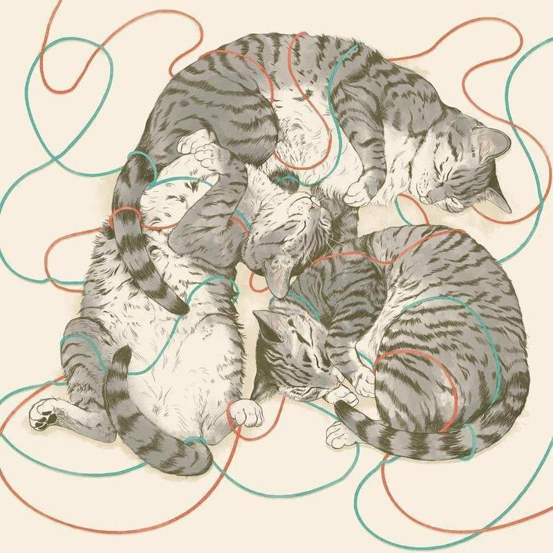 Sleeping Cats -Leinwandbild