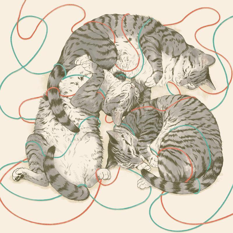 Sleeping Cats tableau en verre