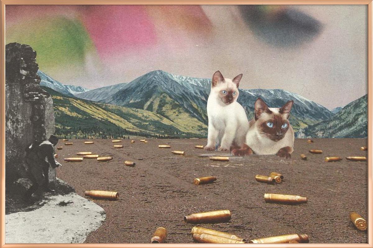 Big Cats of War Poster in Aluminium Frame