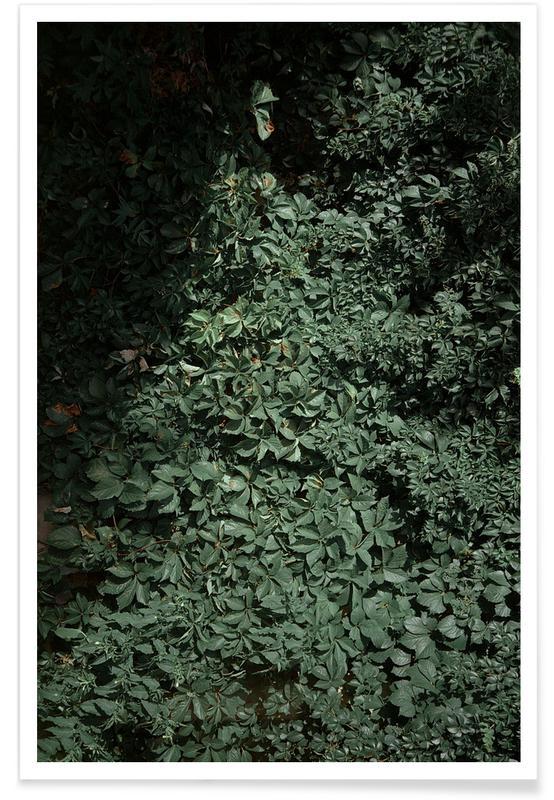 Blätter & Pflanzen, Greens -Poster