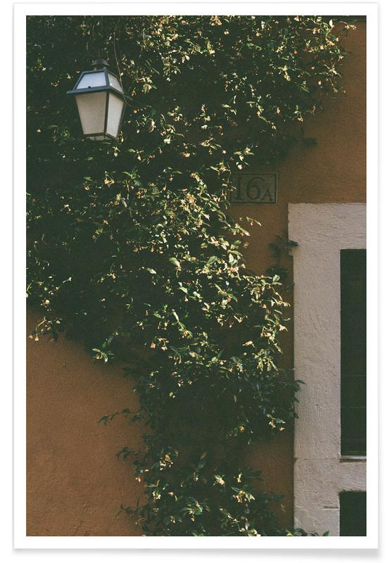 Architectural Details, Leaves & Plants, 16A Poster