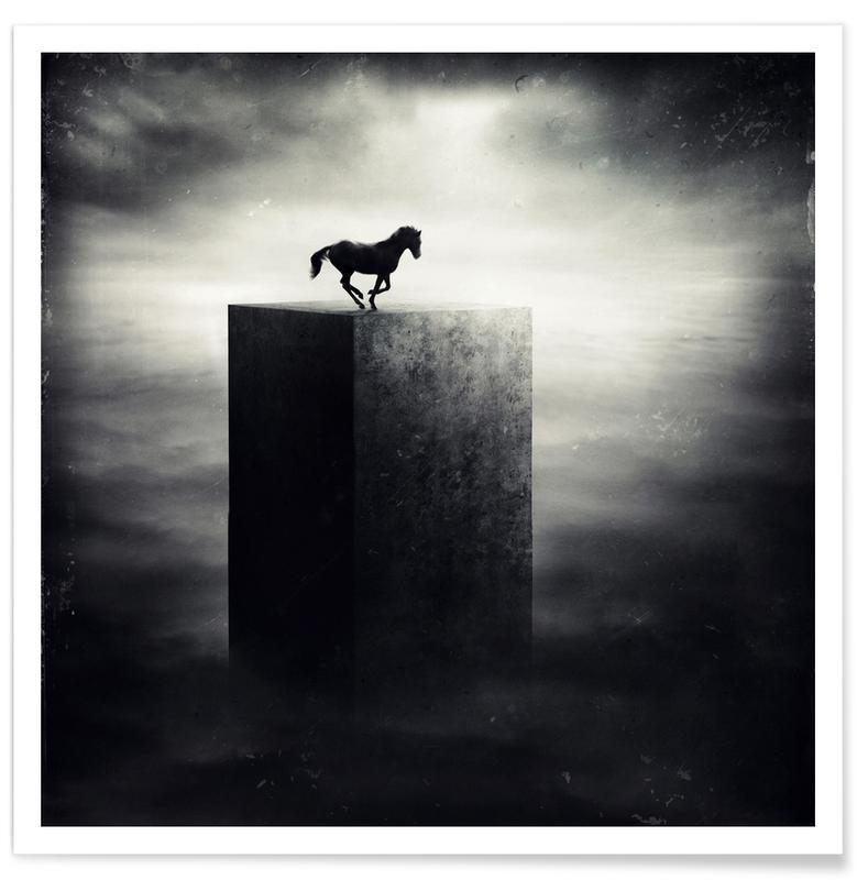 Chevaux, Noir & blanc, Rêve, pa 2010-20 affiche