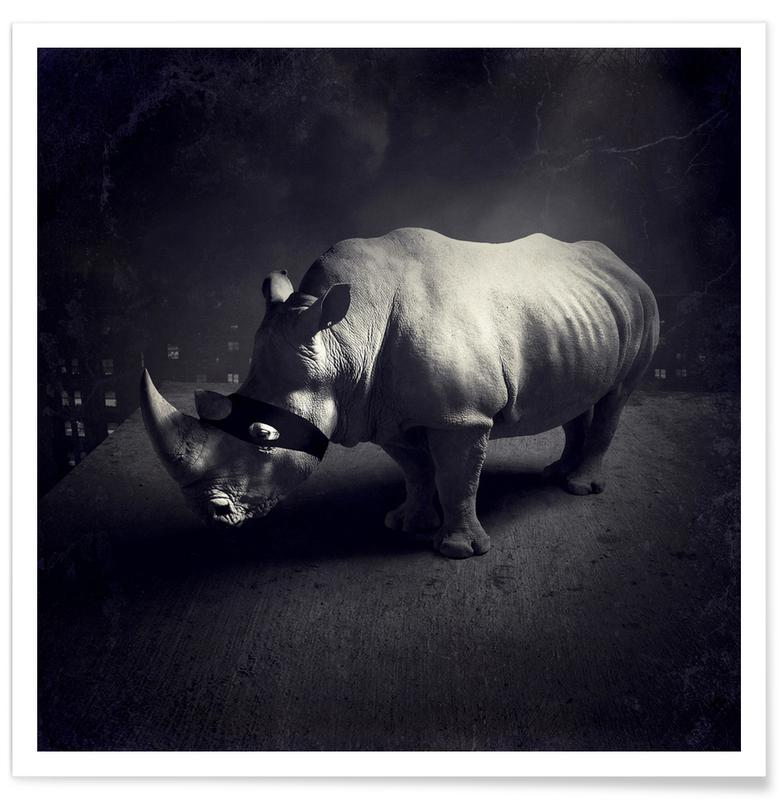 Noir & blanc, Rêve, Rhinocéros, pa 2011-11 affiche