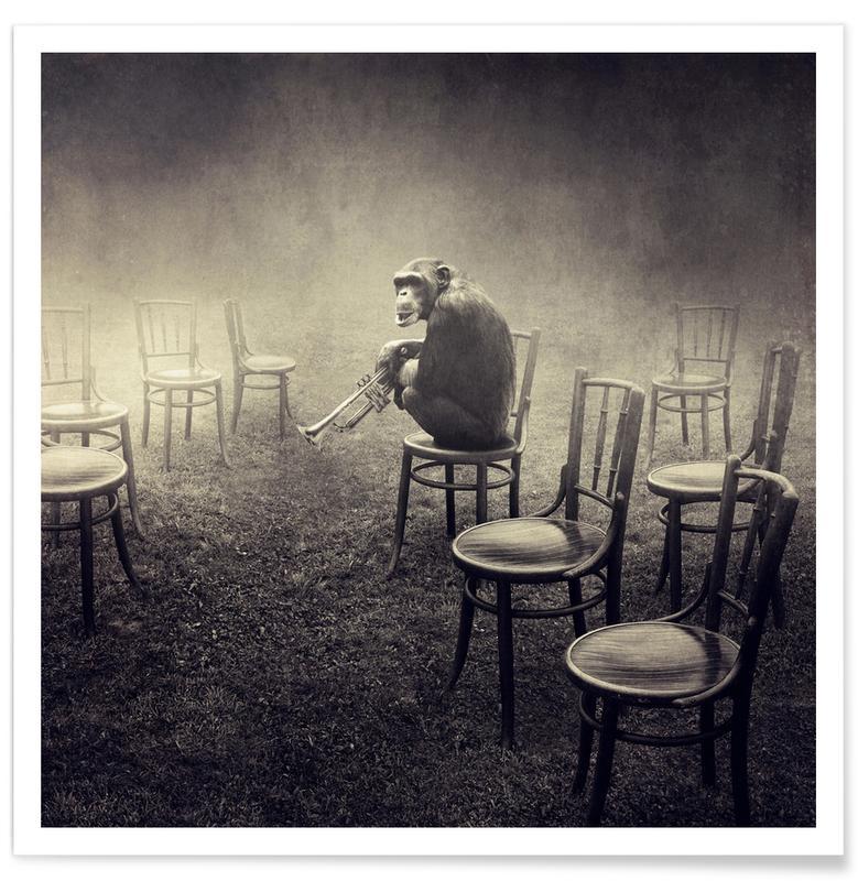 Schwarz & Weiß, Traumwelt, Affen, pa 2011-18 -Poster