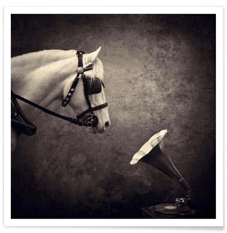 Dromerig, Paarden, pa 2012-05 poster