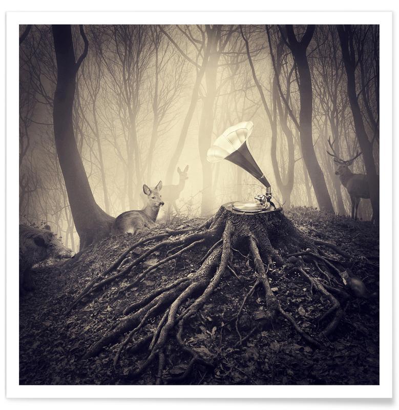 Hirsche, Traumwelt, pa 2012-07 -Poster