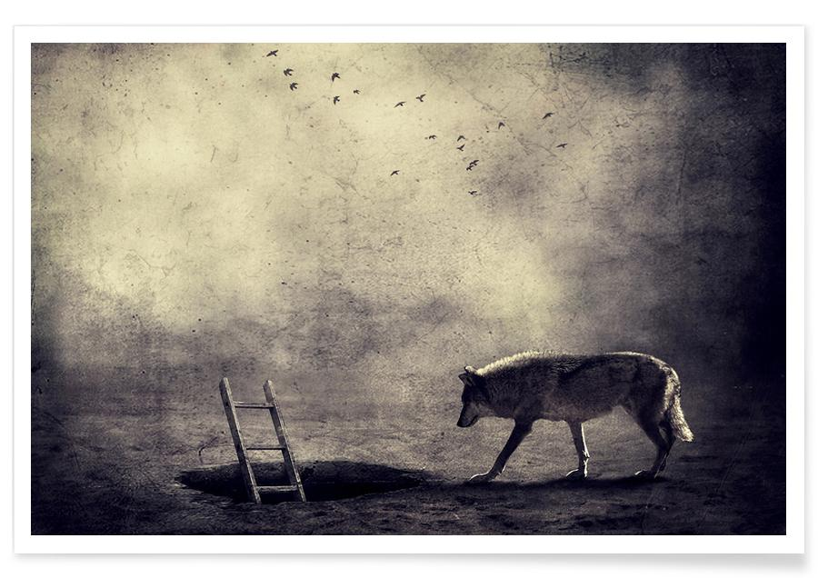 Rêve, Loups, pa 2009-03 affiche