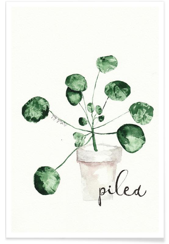 Pilea affiche