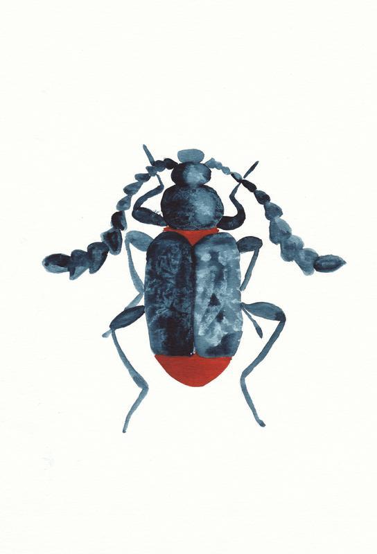 Blue Beetle -Acrylglasbild
