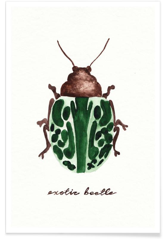 Exotic Beetle -Poster