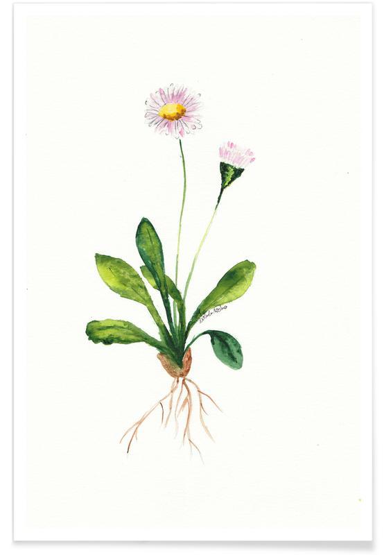 Daisy -Poster