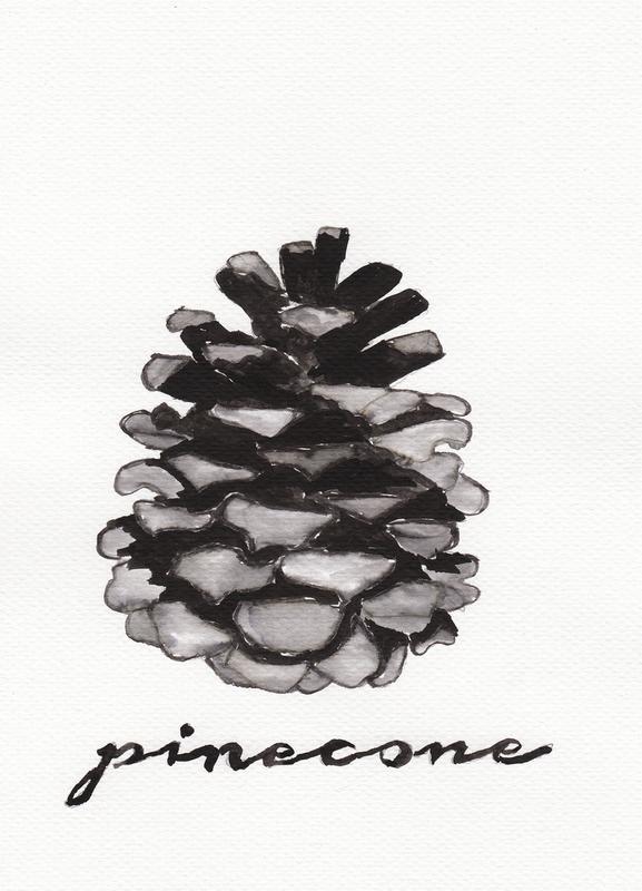 Pine Cone -Leinwandbild