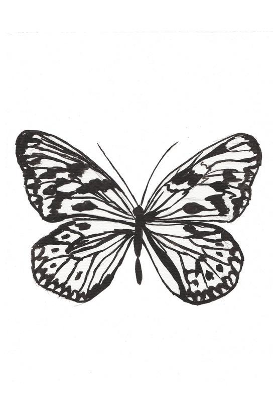 Butterfly No. 45 alu dibond