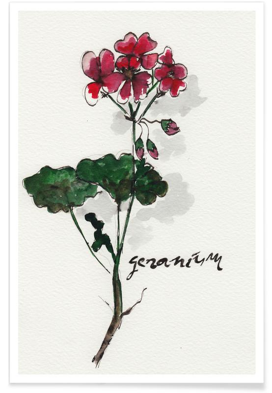 Geranium -Poster