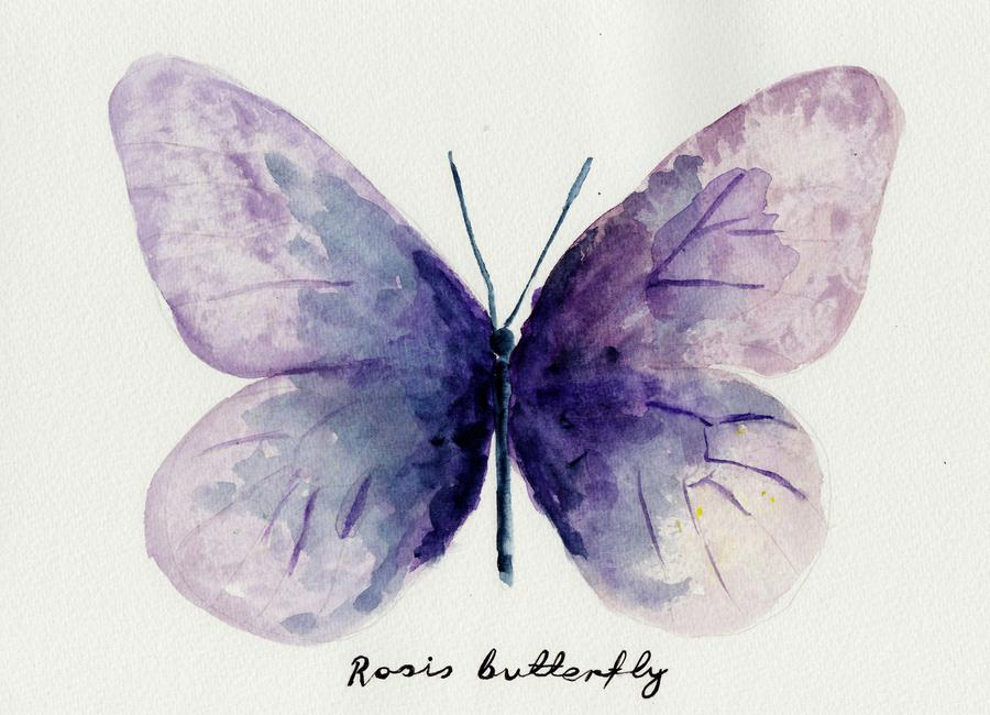 Rosi's Butterfly Canvas Print
