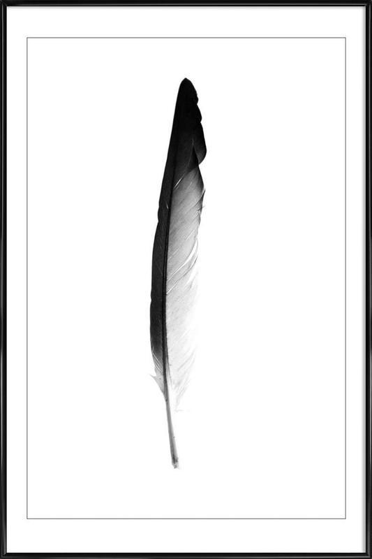 Feather -Bild mit Kunststoffrahmen