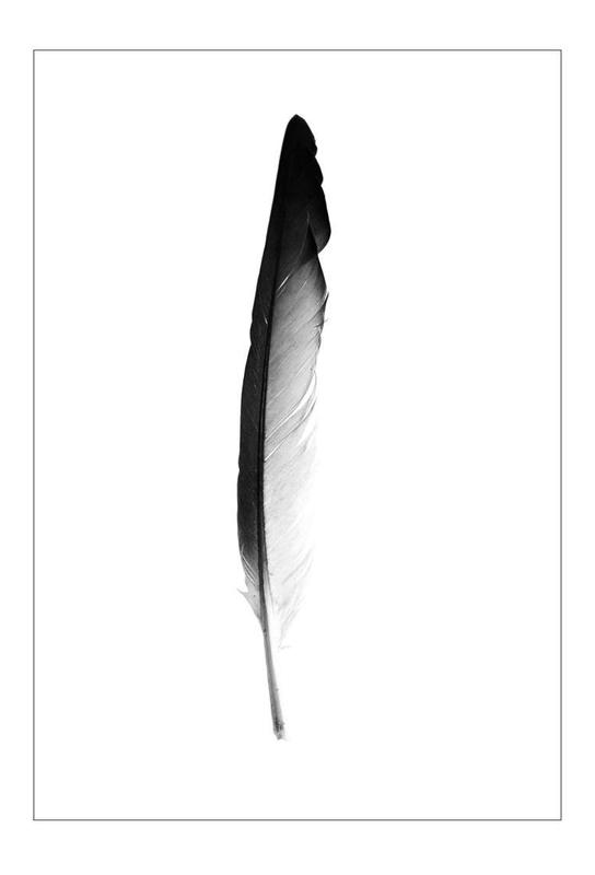 Feather Aluminium Print