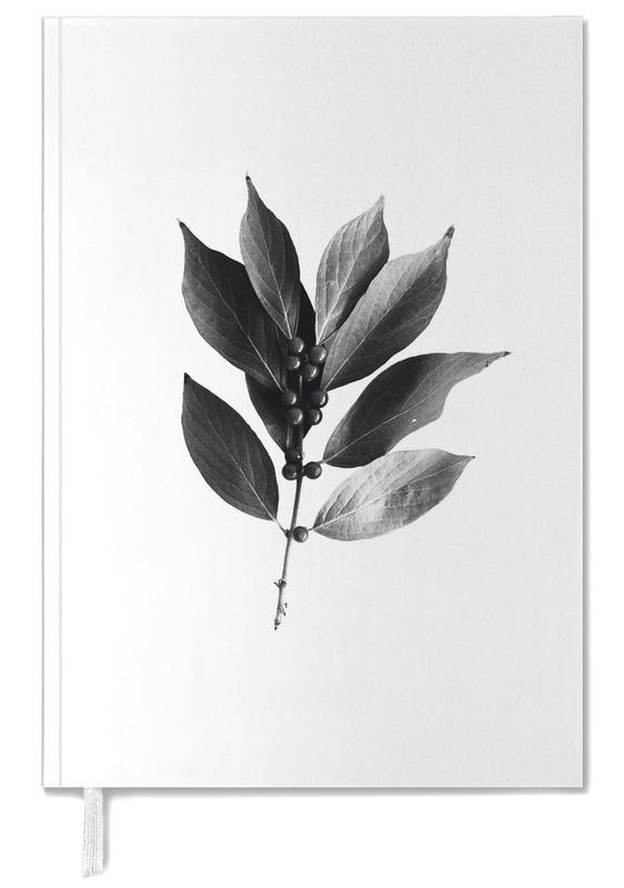 Noir & blanc, Leaf 2 agenda
