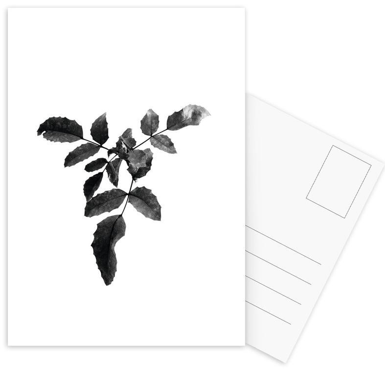 Zwart en wit, Leaf 3 ansichtkaartenset