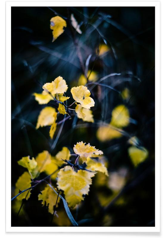 Hojas y plantas, Into the Forest II póster
