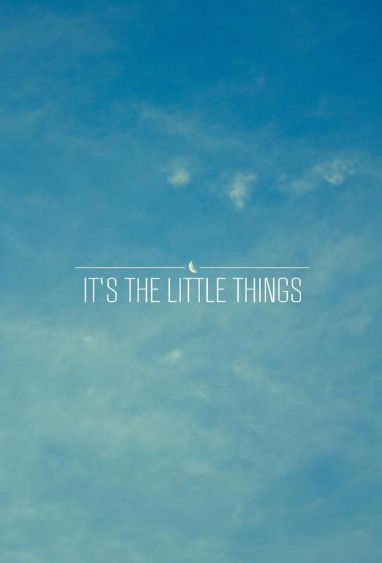 Little Things Aluminium Print