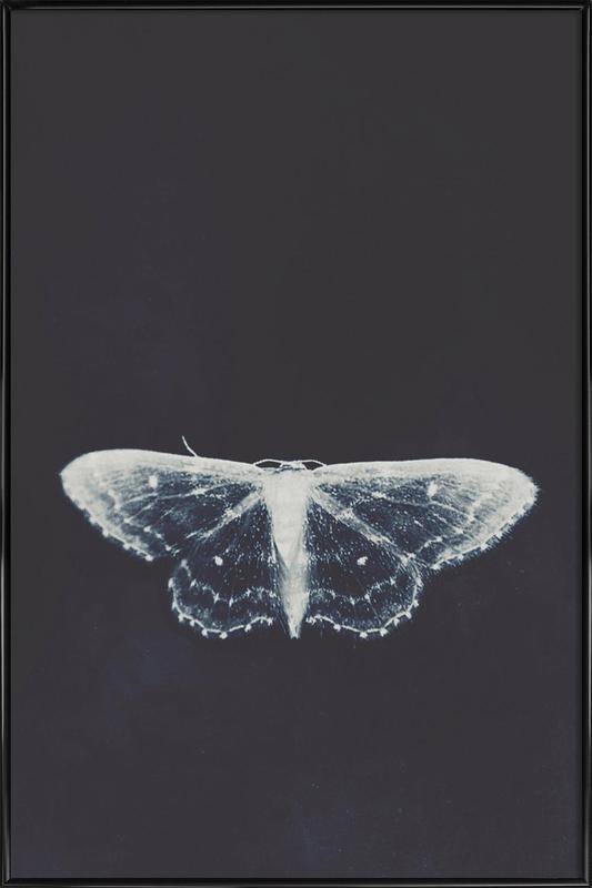 Fragile Framed Poster