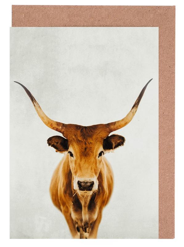Kühe, Honey Portrait -Grußkarten-Set