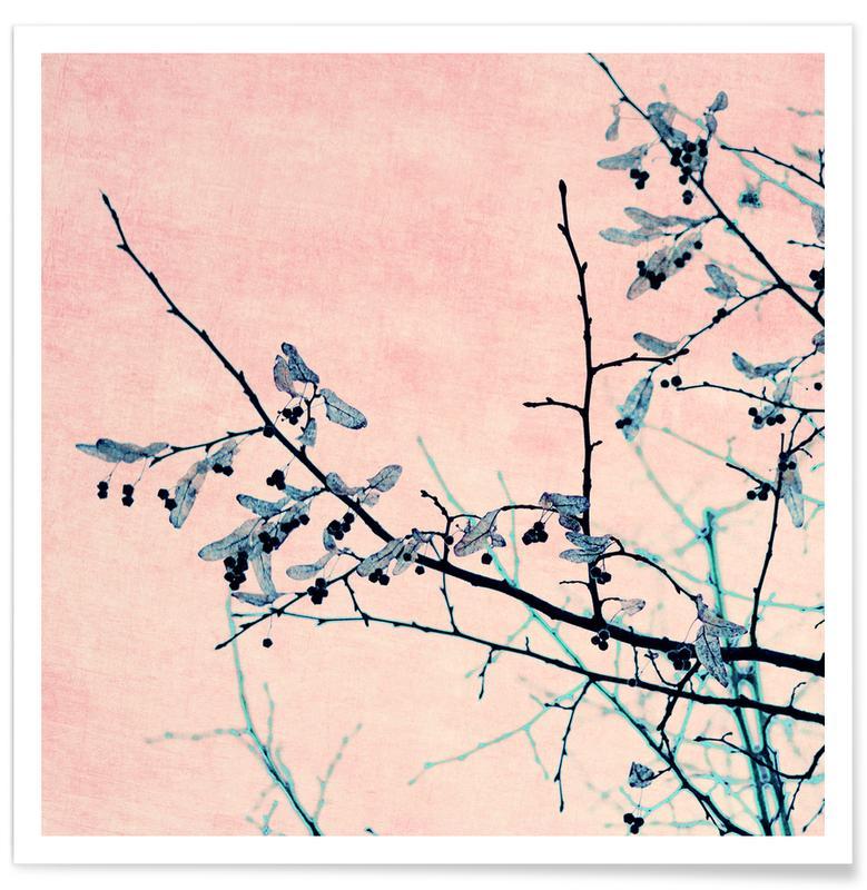 Winter Berries I poster