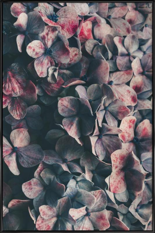 Moody Blues 2 Framed Poster