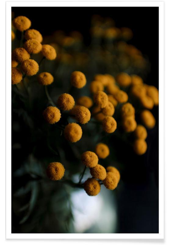 Mustard Yellow Flowers poster