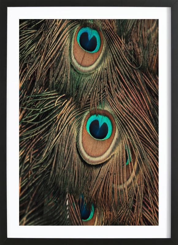 Peacock Feathers -Bild mit Holzrahmen
