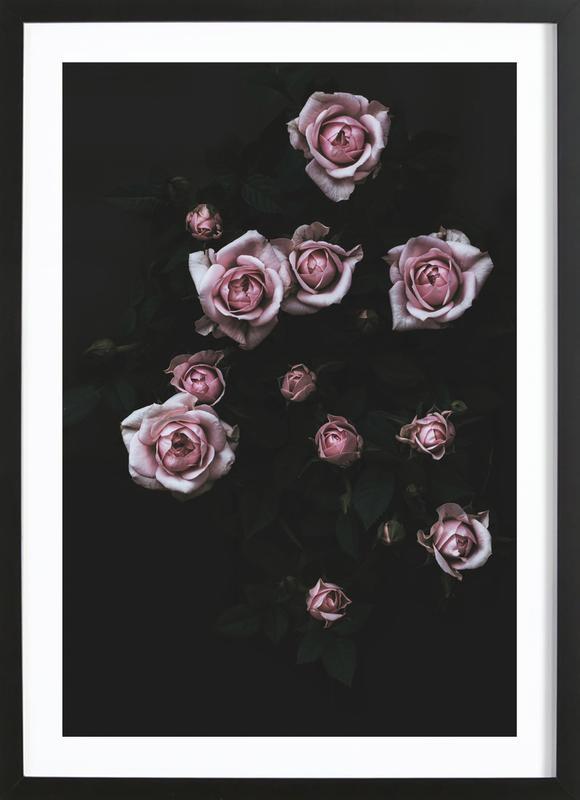 Velvet Rose Pink ingelijste print