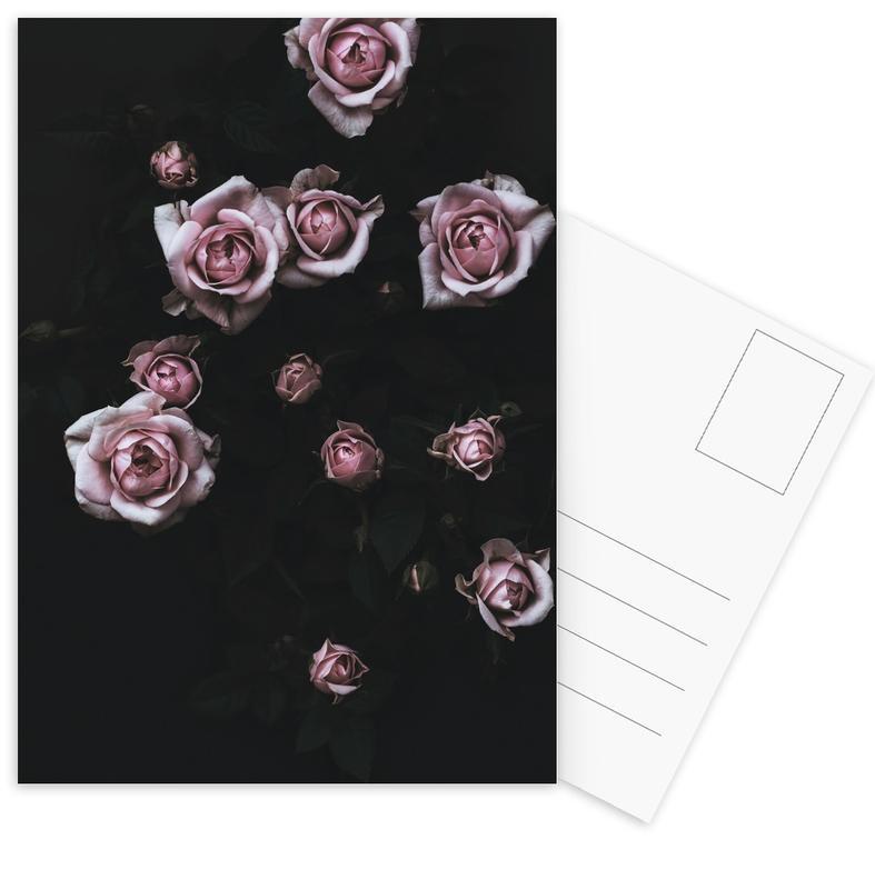 Velvet Rose Pink -Postkartenset
