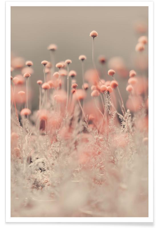 Pink Angel Plakat